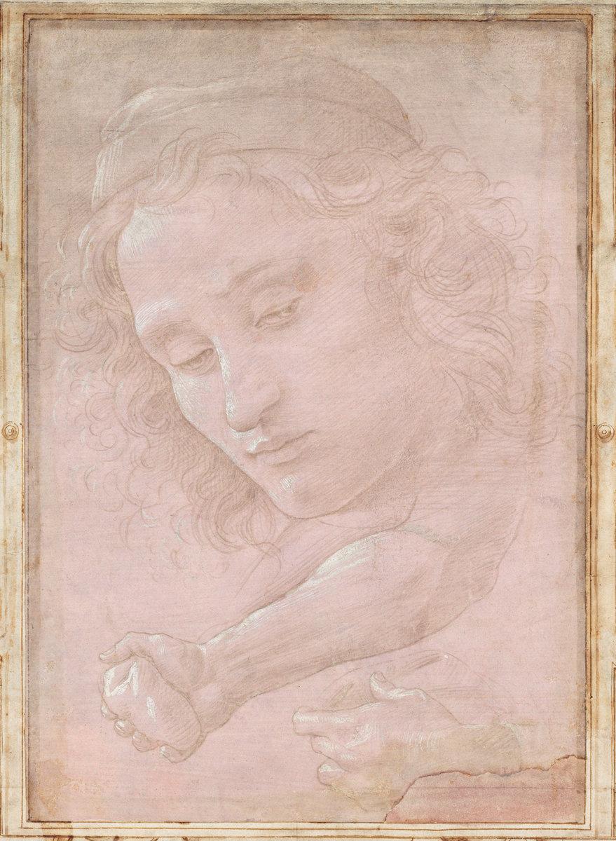 Сандро Боттичелли. Портрет юноши
