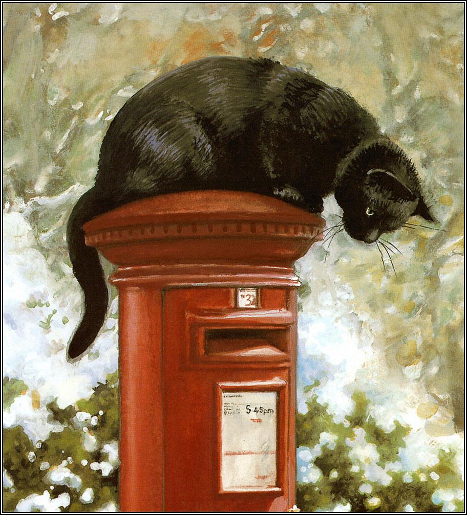 Krissy Snelling. Funny cat
