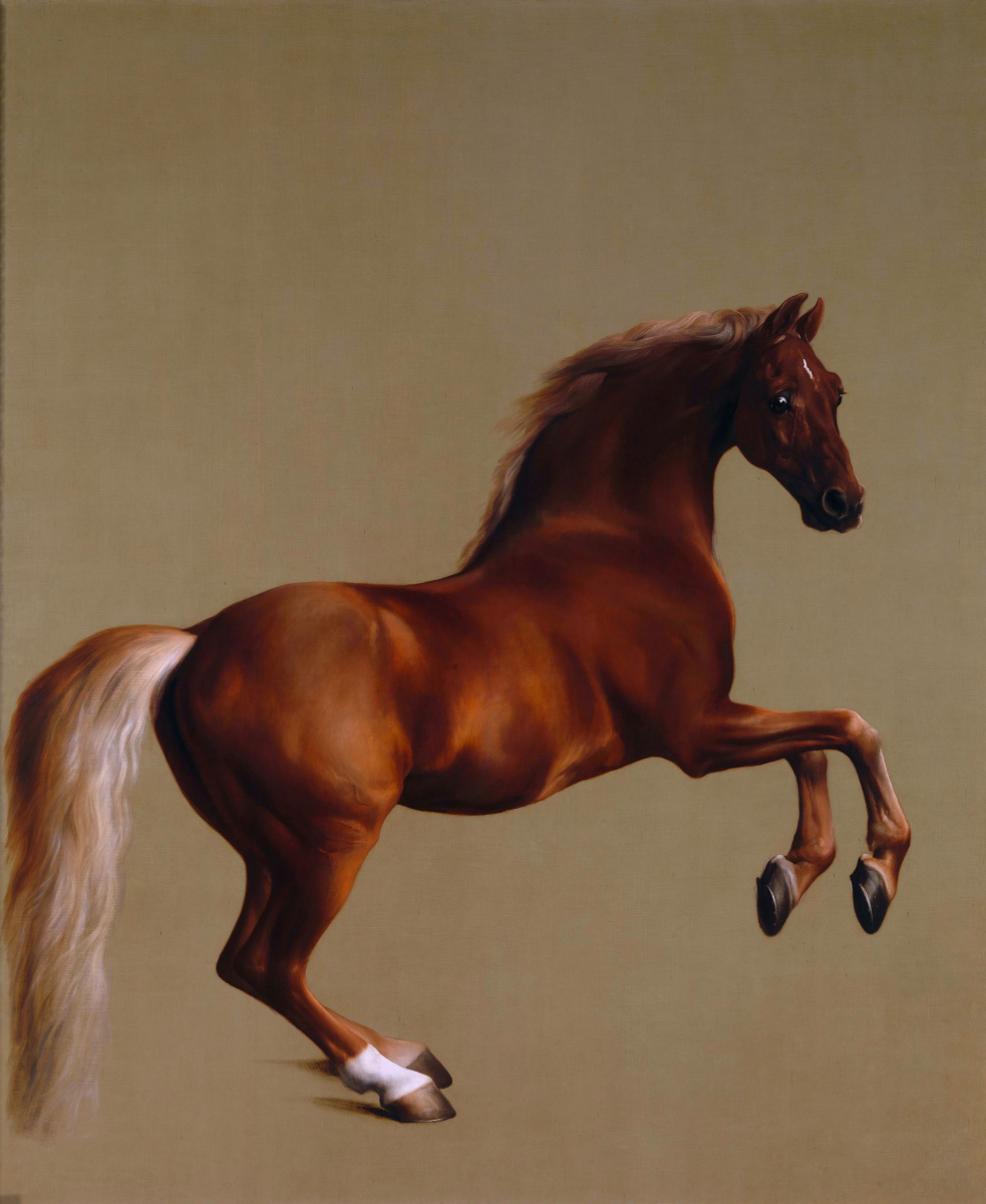 Джордж Стаббс. Конь