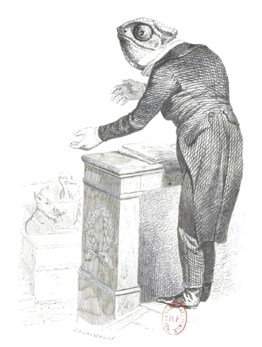 "Jean Inias Isidore (Gerard) Granville. Chameleon orator. ""Scenes of public and private life of animals"""