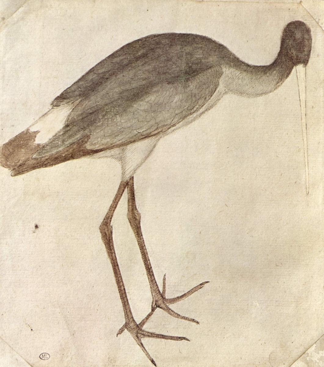 Antonio Pisanello. Stork