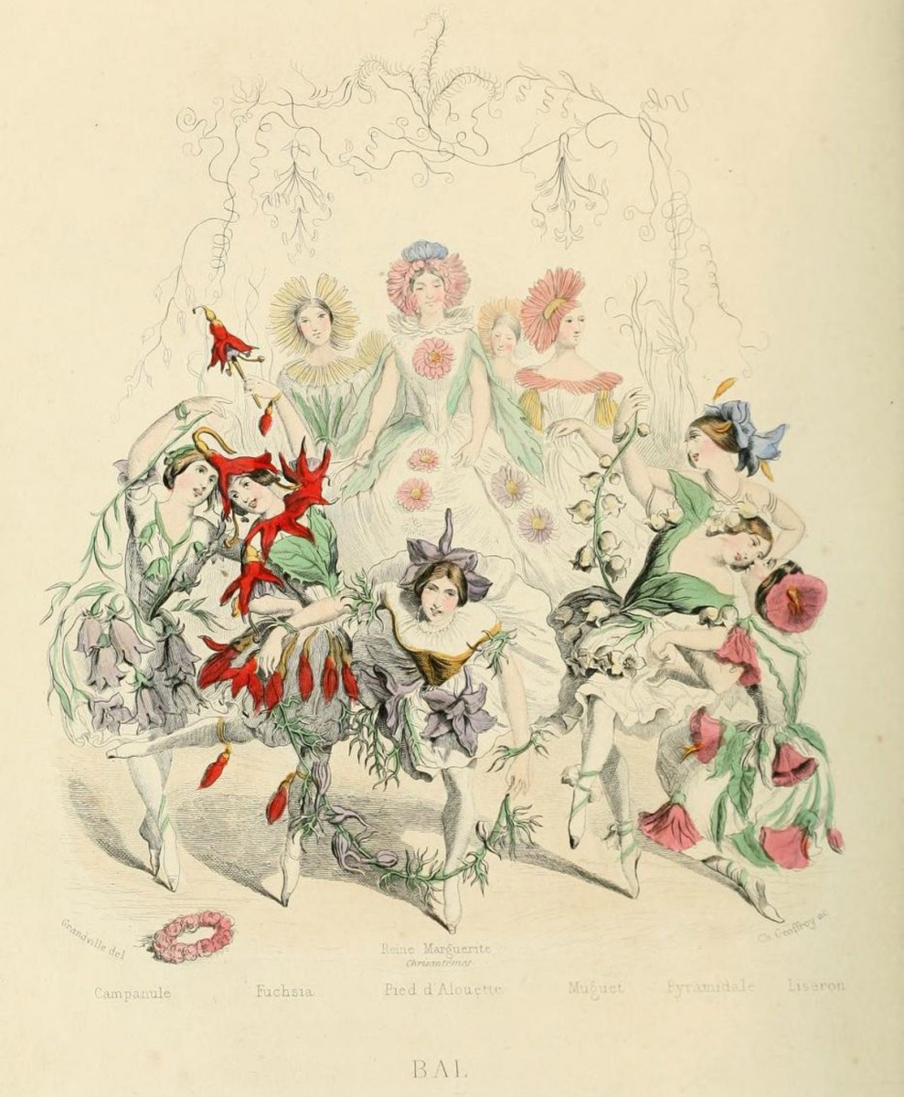 """Jean Inias Isidore (Gerard) Granville. A ball of flowers. The series """"Animate Flowers"""""""