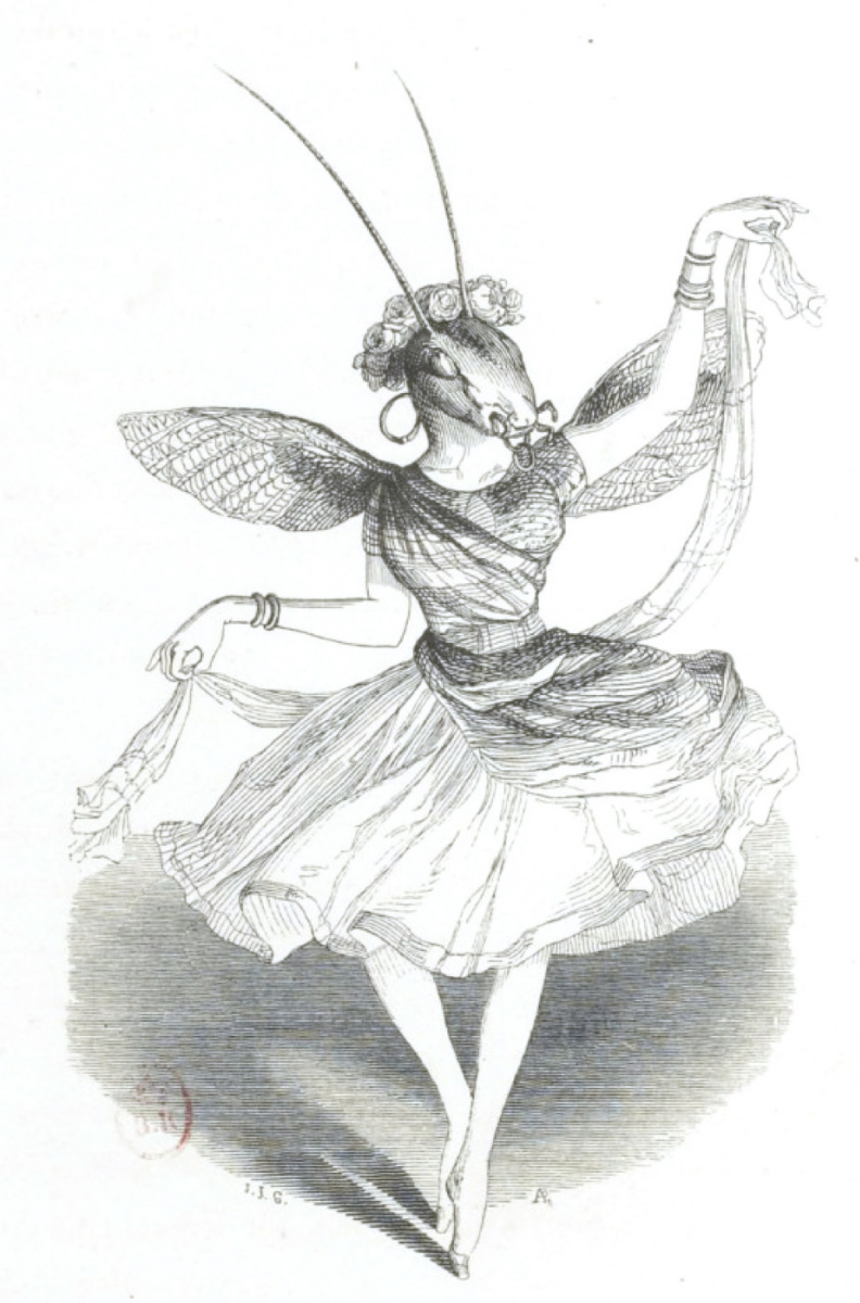 "Jean Inias Isidore (Gerard) Granville. The prima locust represents Nymph. ""Scenes of public and private life of animals"""