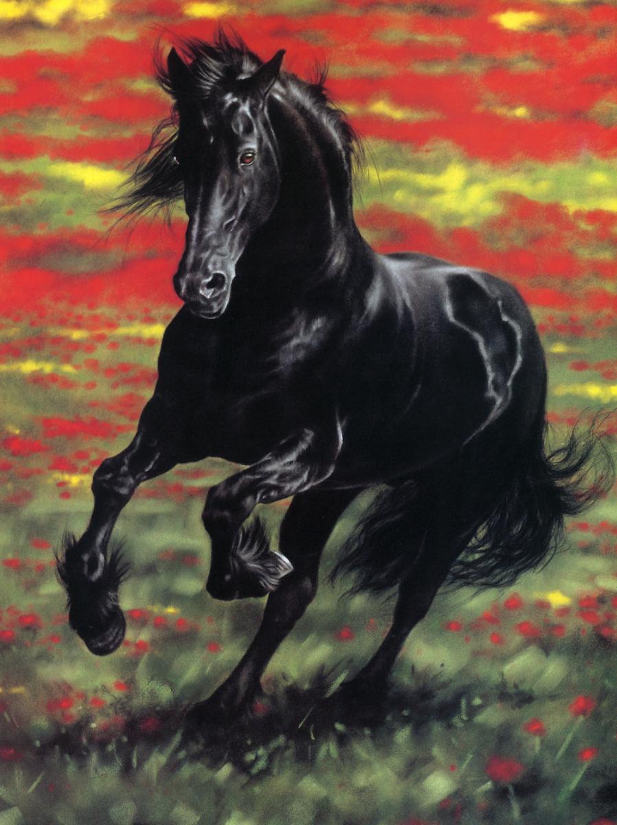 Лесли Харрисон. Черный конь
