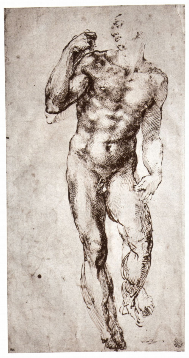 Микеланджело Буонарроти. Стоящий обнаженный, вид спереди