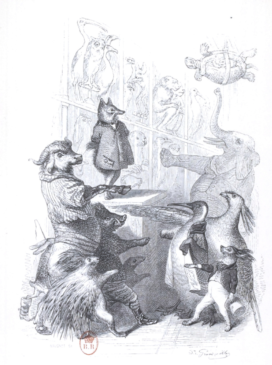 """Jean Inias Isidore (Gerard) Granville. Oath. """"Scenes of public and private life of animals"""""""