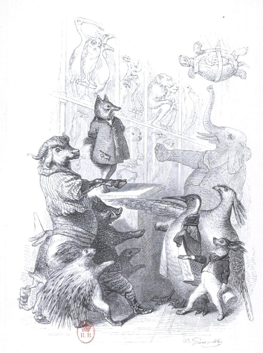 """Жан Иньяс Изидор (Жерар) Гранвиль. Присяга. """"Сцены общественной и частной жизни животных"""""""