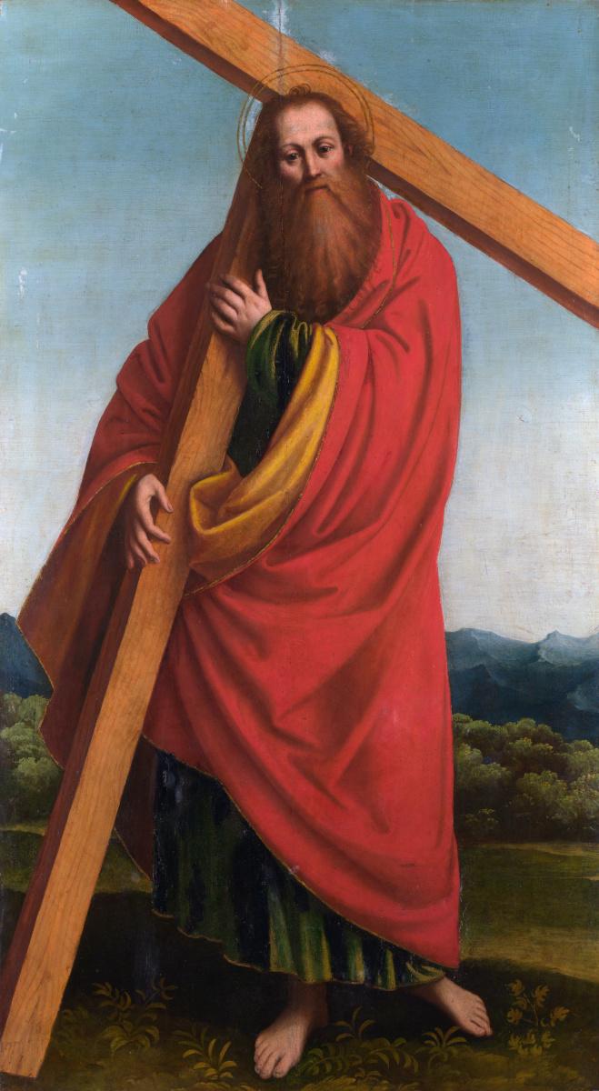 Гауденцио, Феррари Гаунцио. Святой Андрей