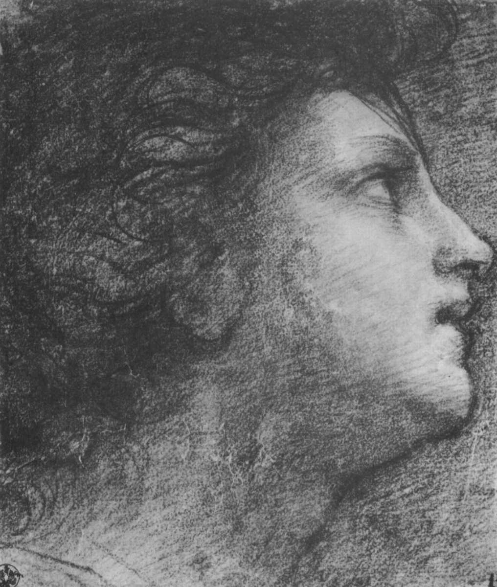 """Raphael Sanzio. The head of the Archangel Raphael. A sketch for the painting """"Madonna with the fish"""""""