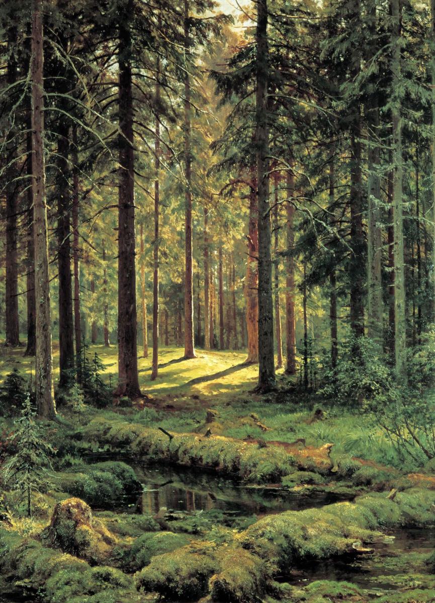Иван Иванович Шишкин. Хвойный лес. Солнечный день