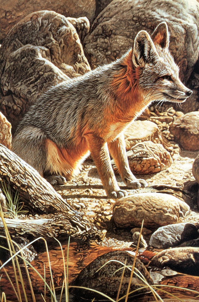 Ron Parker. Fox