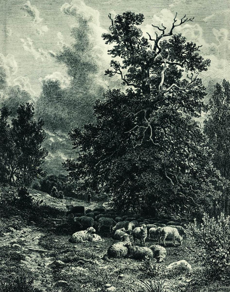 Иван Иванович Шишкин. Стадо овец на опушке леса