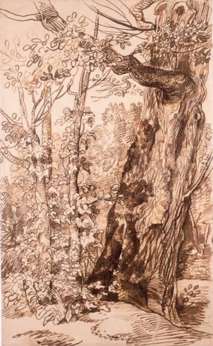 Ян Ливенс. Пейзаж с большим деревом