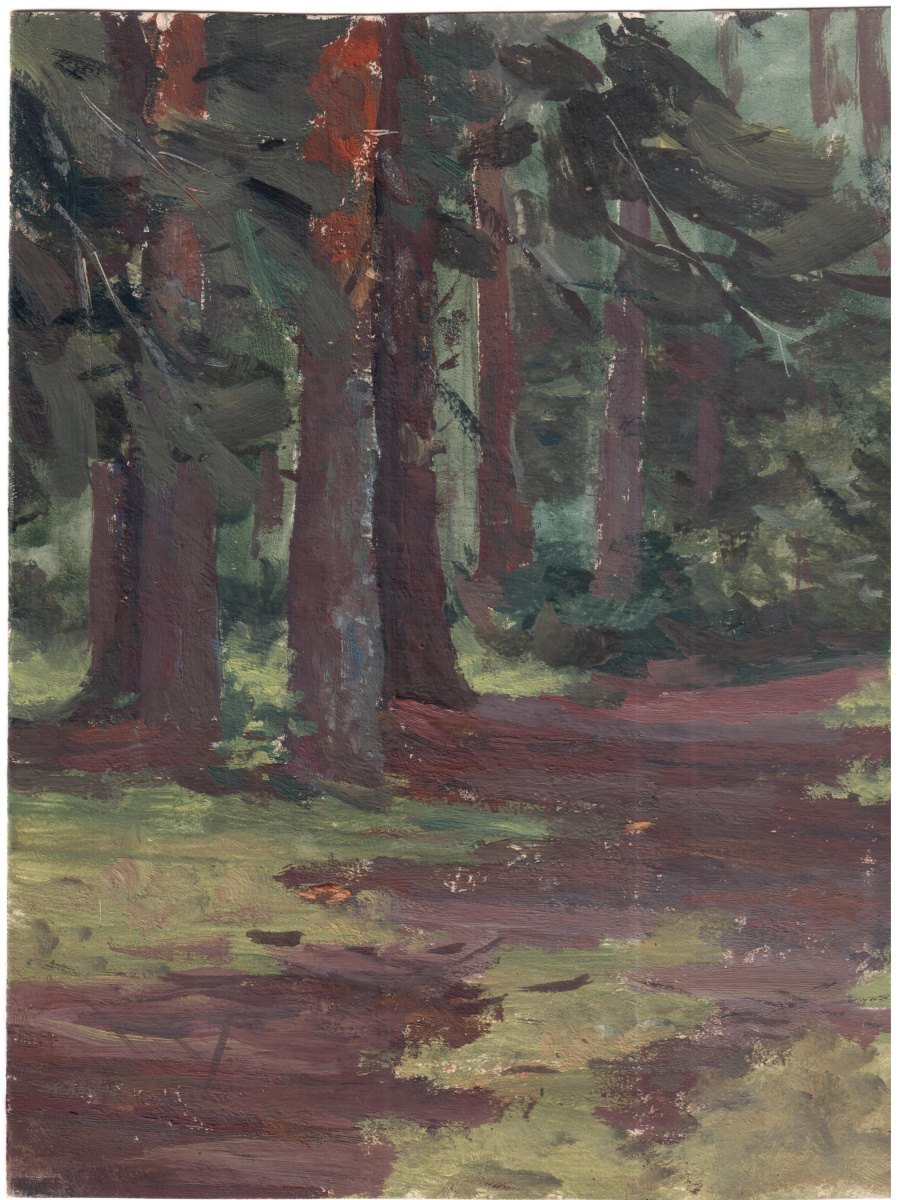 Arkady Pavlovich Laptev. In the pine forest