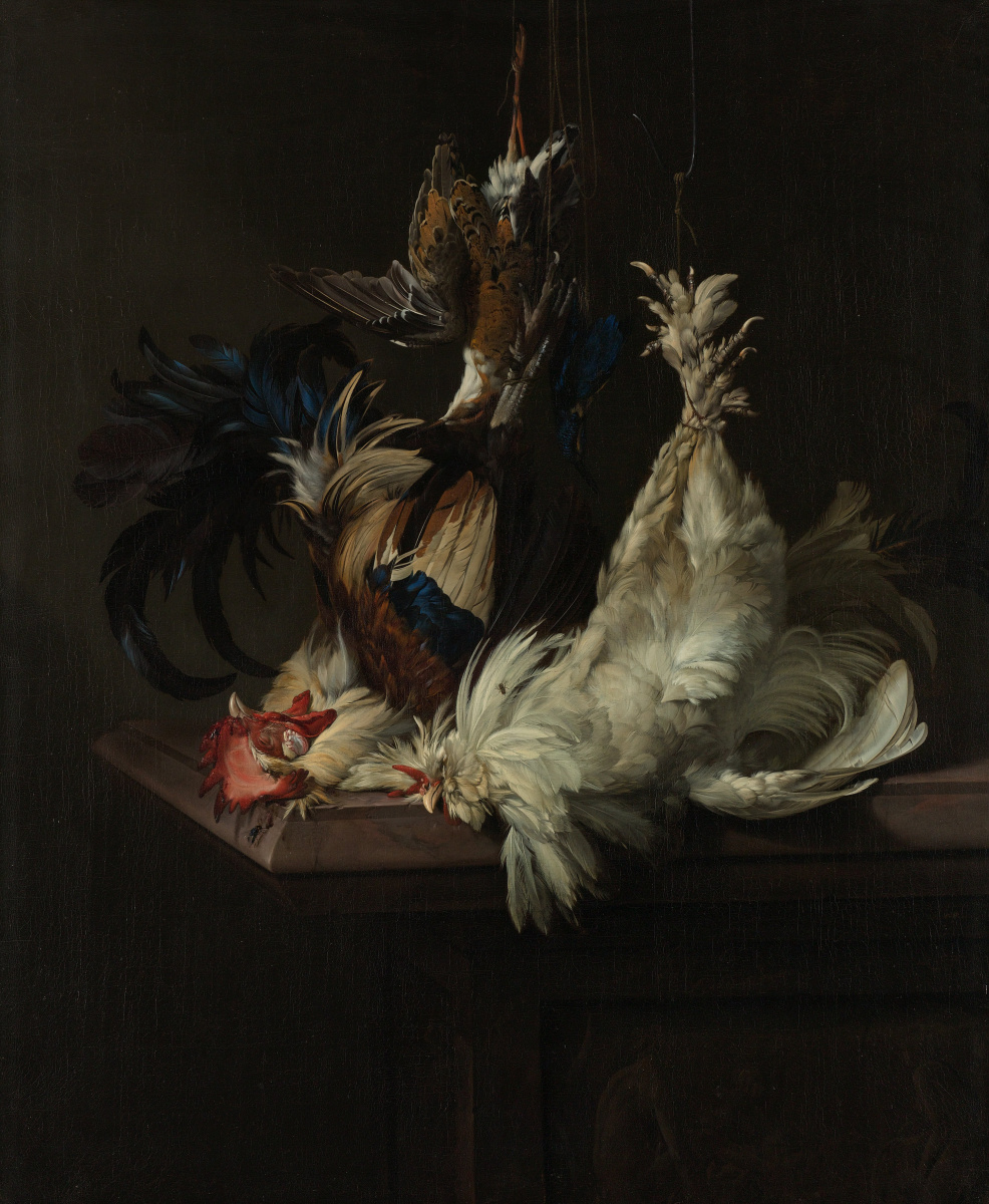 Willem van Aelst. Still life with poultry