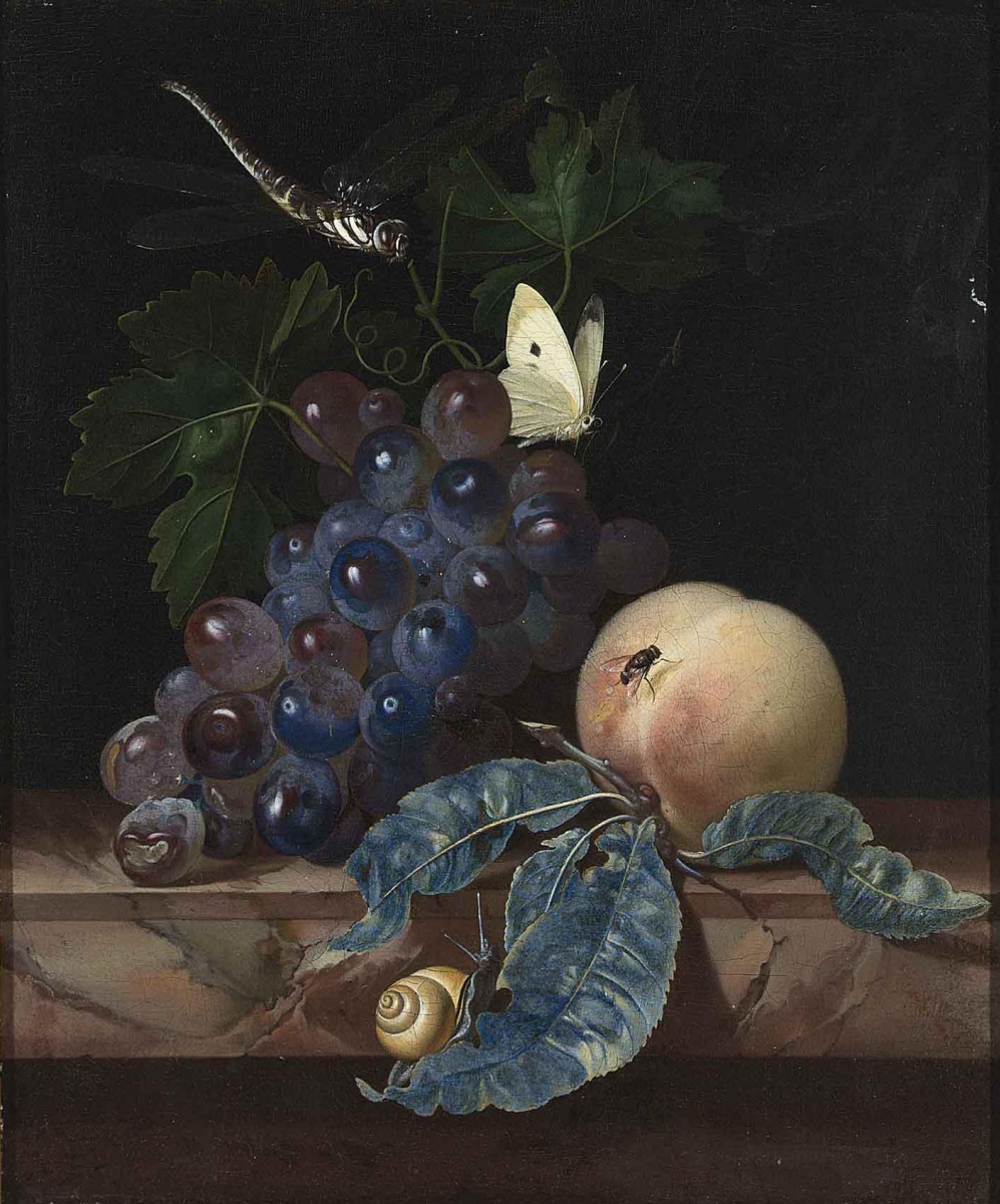 Willem van Aelst. Still life with grapes, a peach, a dragonfly and a butterfly