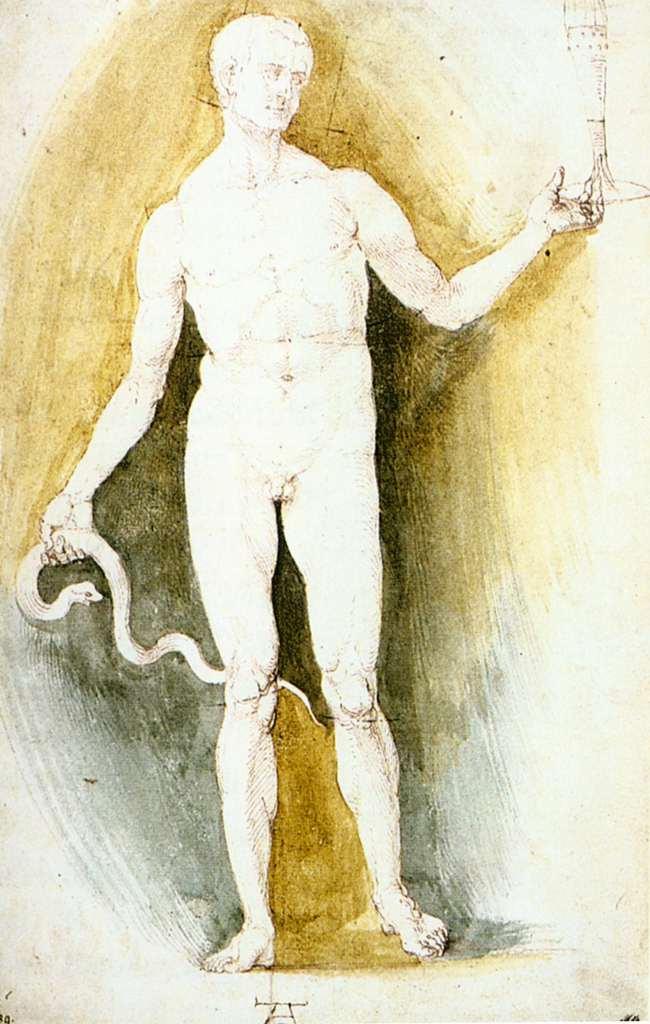Albrecht Dürer. Asclepius