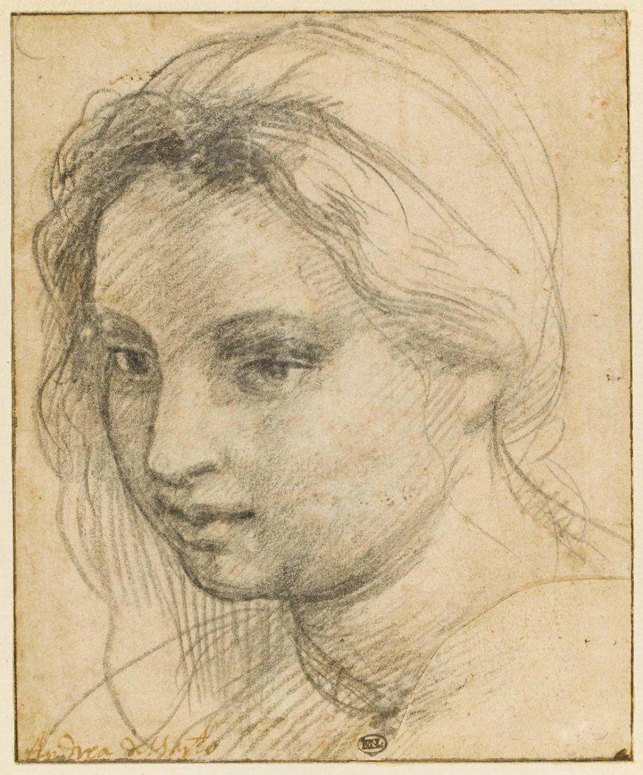 Andrea del Sarto. Sketch of a female head