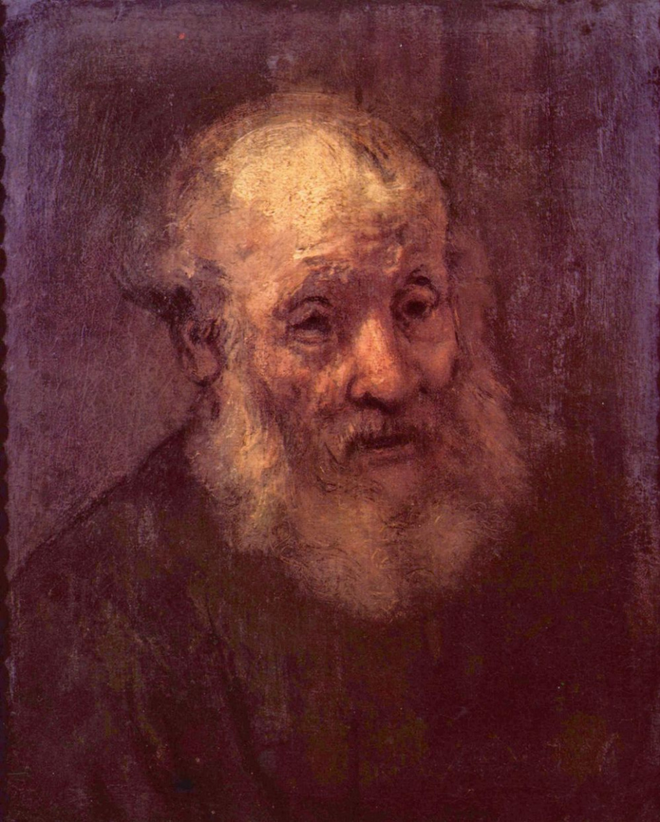 Рембрандт Харменс ван Рейн. Головая старика