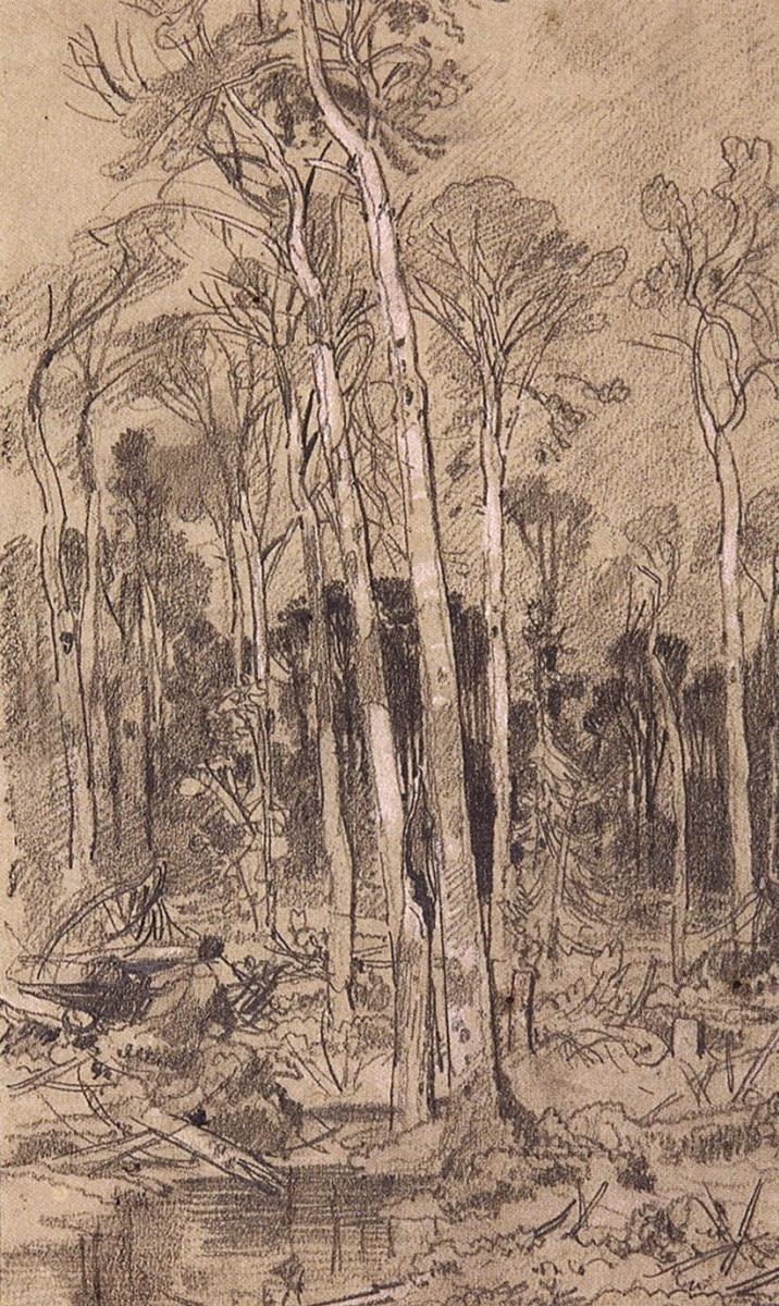 Иван Иванович Шишкин. Весной в лесу