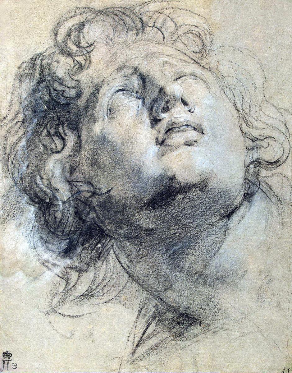 Питер Пауль Рубенс. Голова юноши, смотрящего вверх