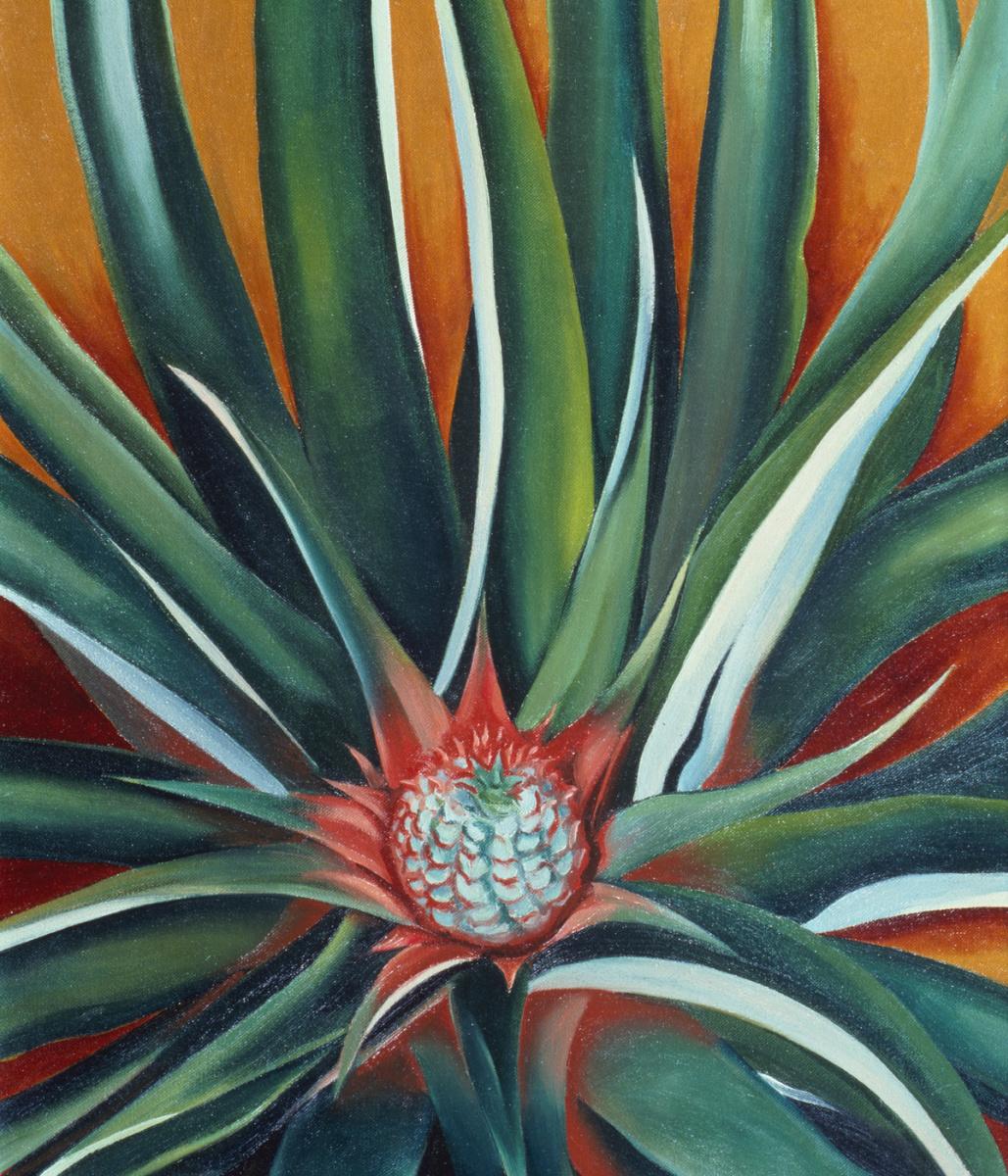 Georgia O'Keeffe. Pineapple Bud
