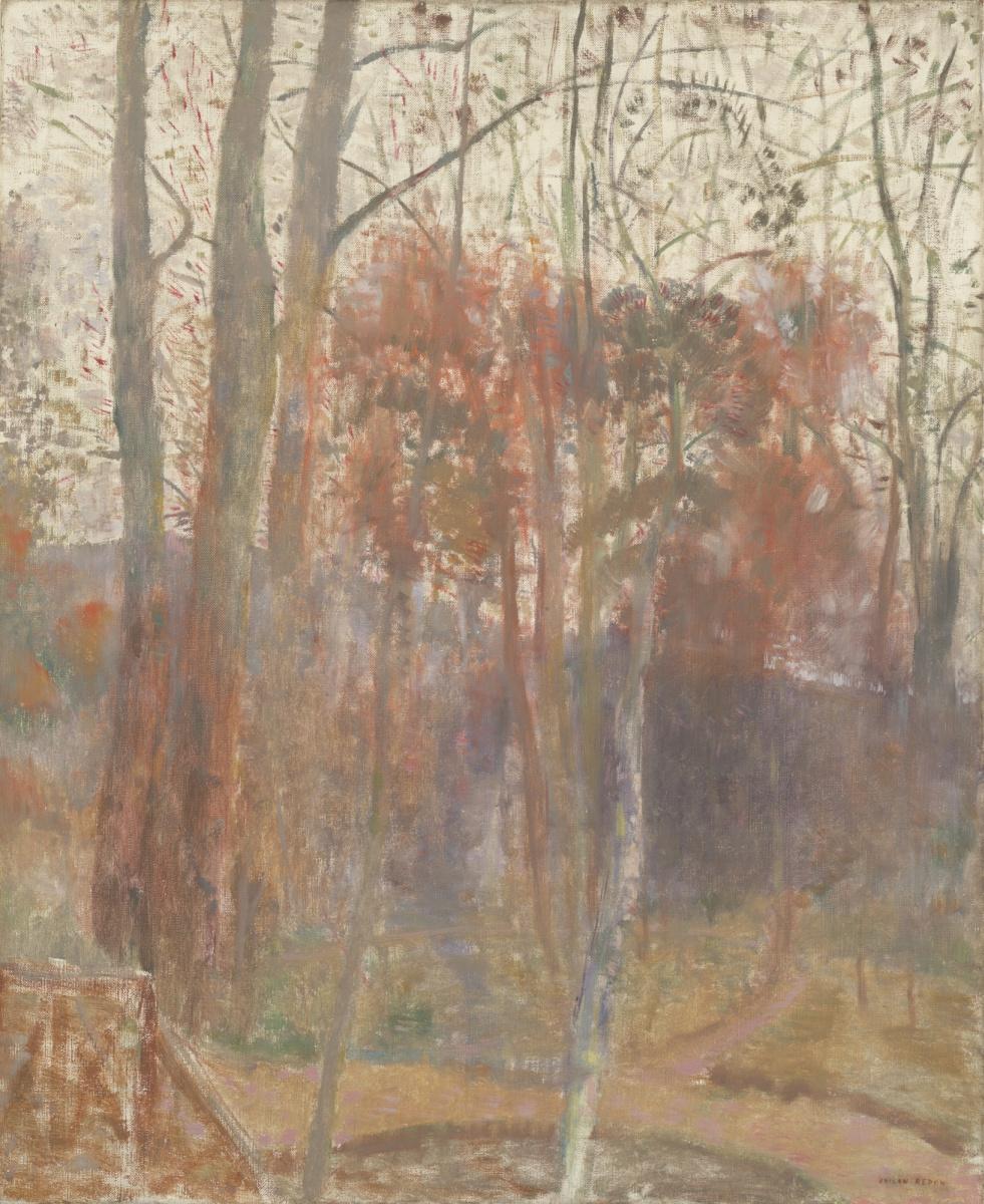 Одилон Редон. Деревья в Бьевре