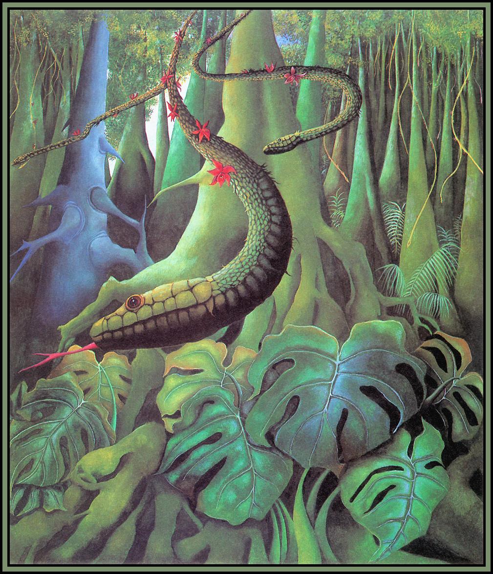 Una Woodruff. Snake Liana