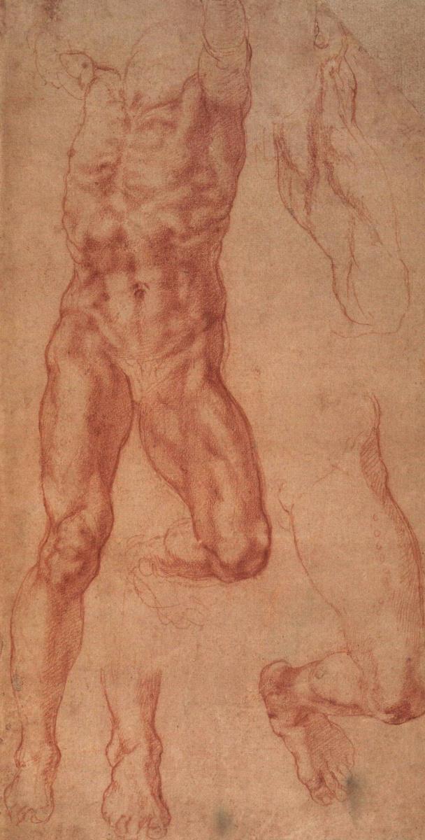 Микеланджело Буонарроти. Изучение человека