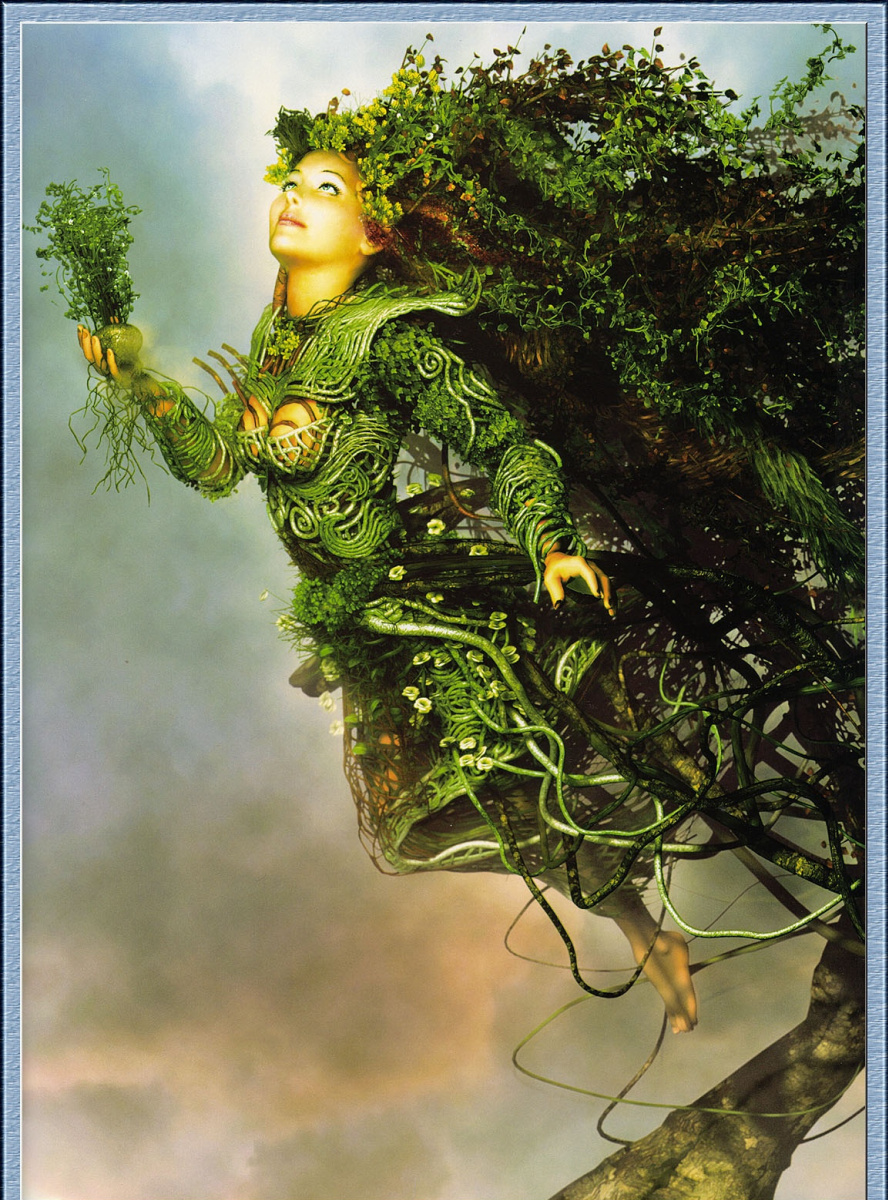 Мит Мейер. Девушка-дерево
