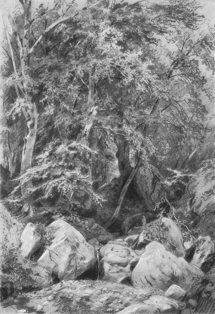Иван Иванович Шишкин. Деревья у ручья на горе Кастель