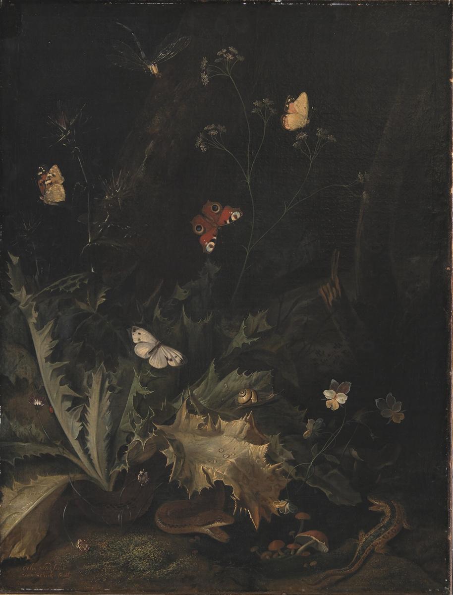 Отто Марсеус ван Скрик. Лесной натюрморт с чертополохом, змеей, ящерицей и бабочками