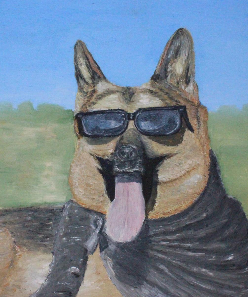 Paul. Dog wearing sunglasses