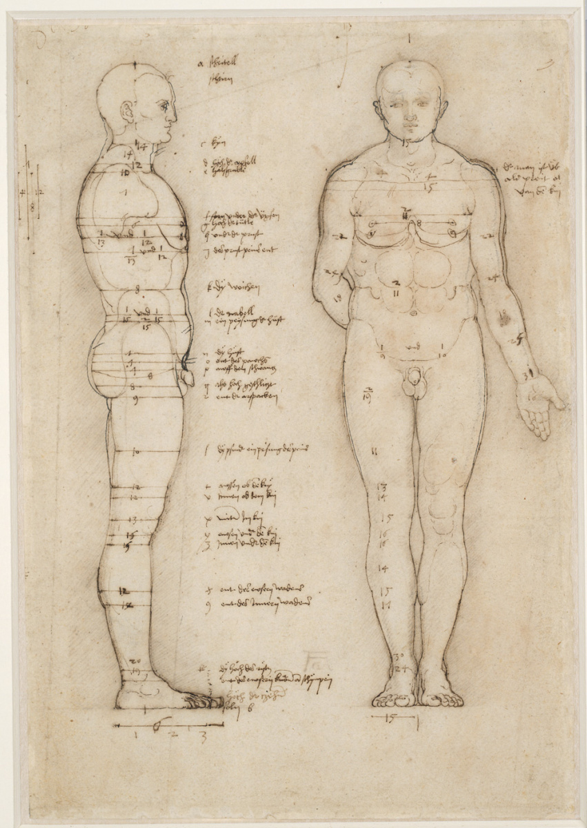 Albrecht Dürer. Male Nude. The study of proportions