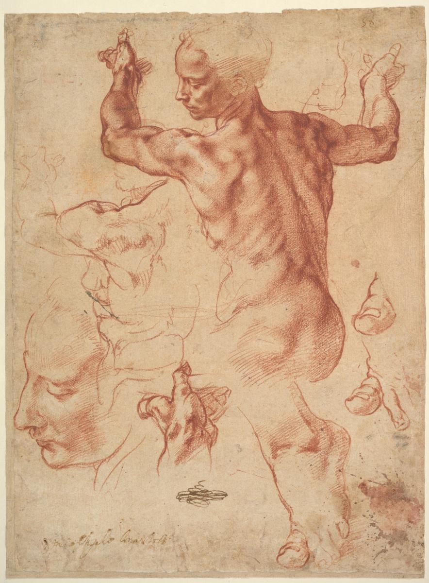 Микеланджело Буонарроти. Ливийская Сивилла (эскиз)