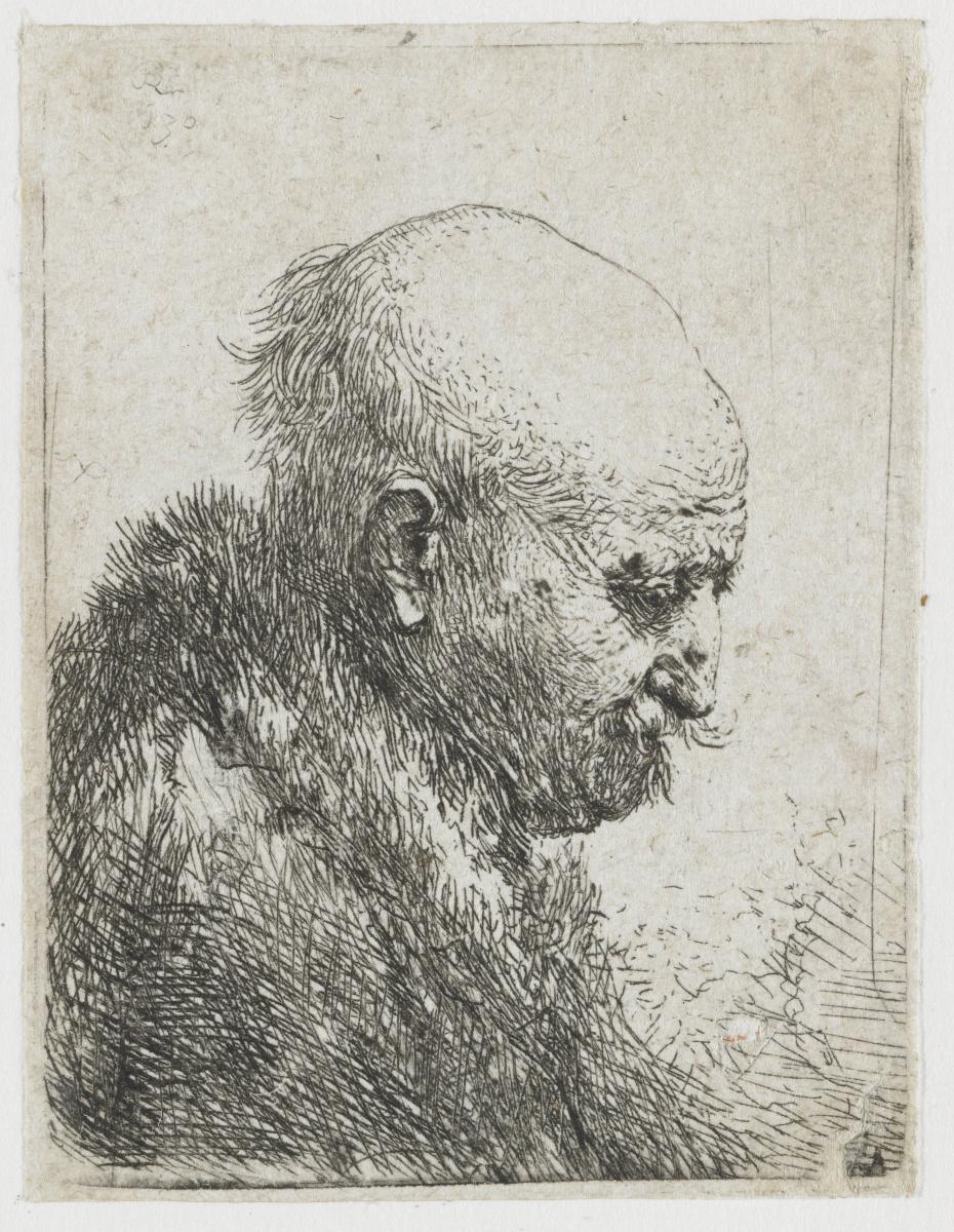 Рембрандт Харменс ван Рейн. Лысый старик в правый профиль