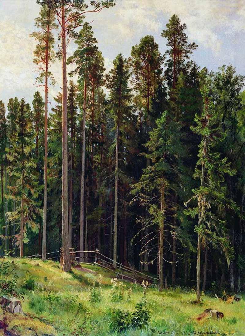 Иван Иванович Шишкин. Лес