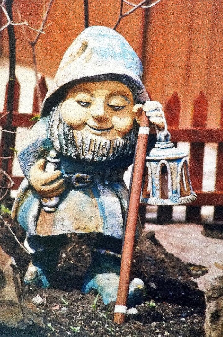 "Ирина Александровна Лычагина. ""FOREST INHABITANT"""