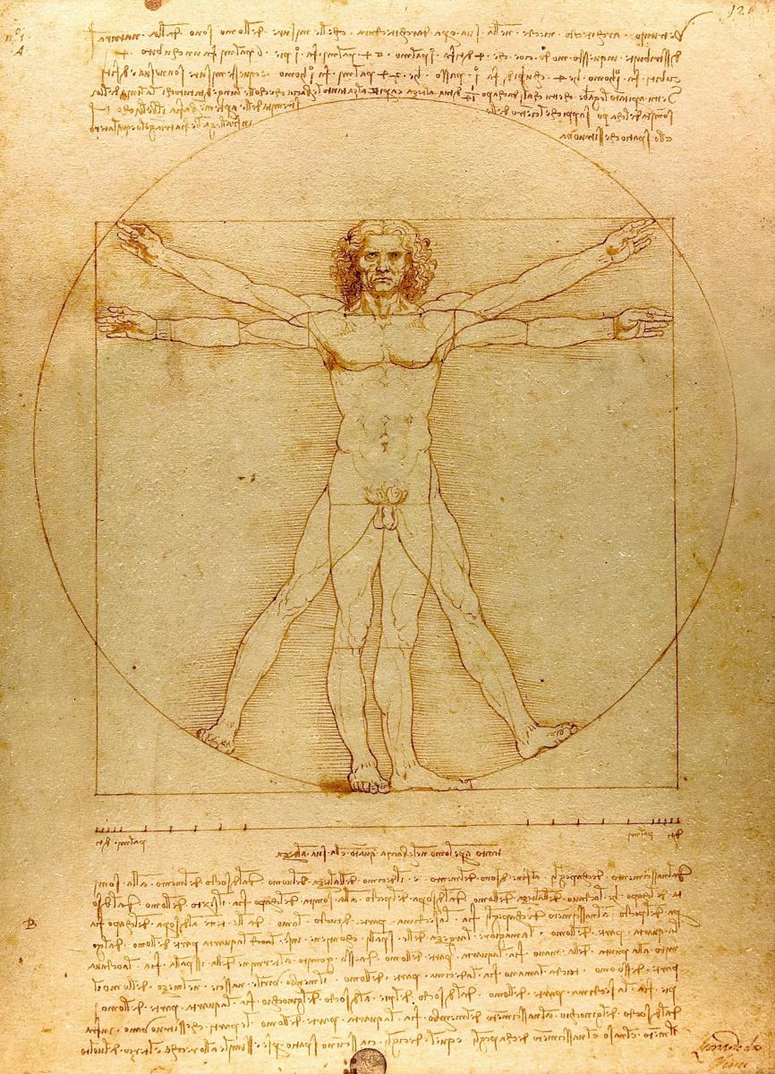 Леонардо да Винчи. Витрувианский человек (пропорции человеческого тела)