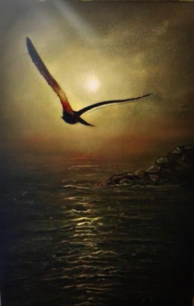 Cristina de biasio. Jonathan Livingston seagull