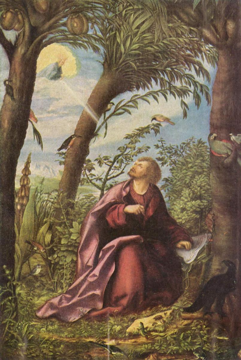 Ханс Бургкмайр Старший. Алтарь Иоанна, центральная часть: Иоанн Евангелист на острове Патмос