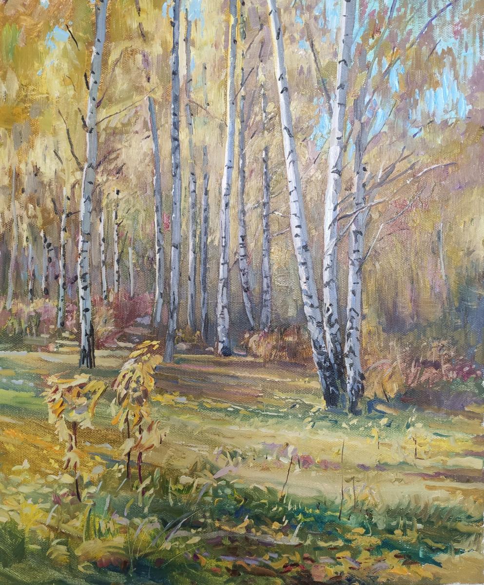 Renat Khusnullovich Khaliulin. Golden time