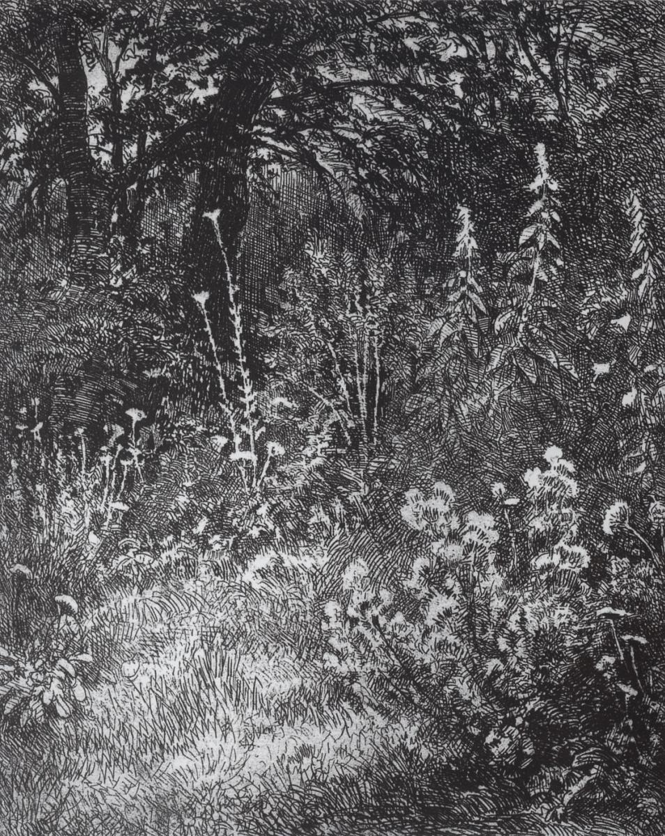 Иван Иванович Шишкин. Лесные цветы