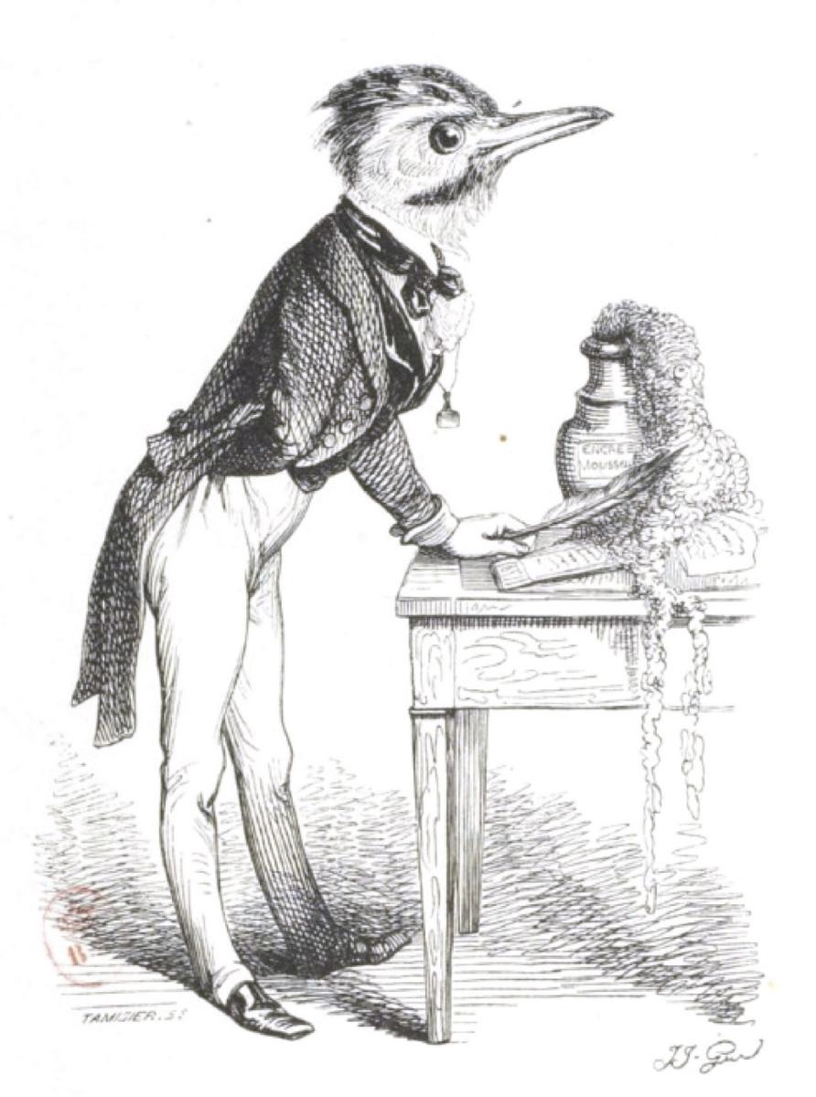 """Жан Иньяс Изидор (Жерар) Гранвиль. Хочу быть великим ученым... """"Сцены общественной и частной жизни животных"""""""