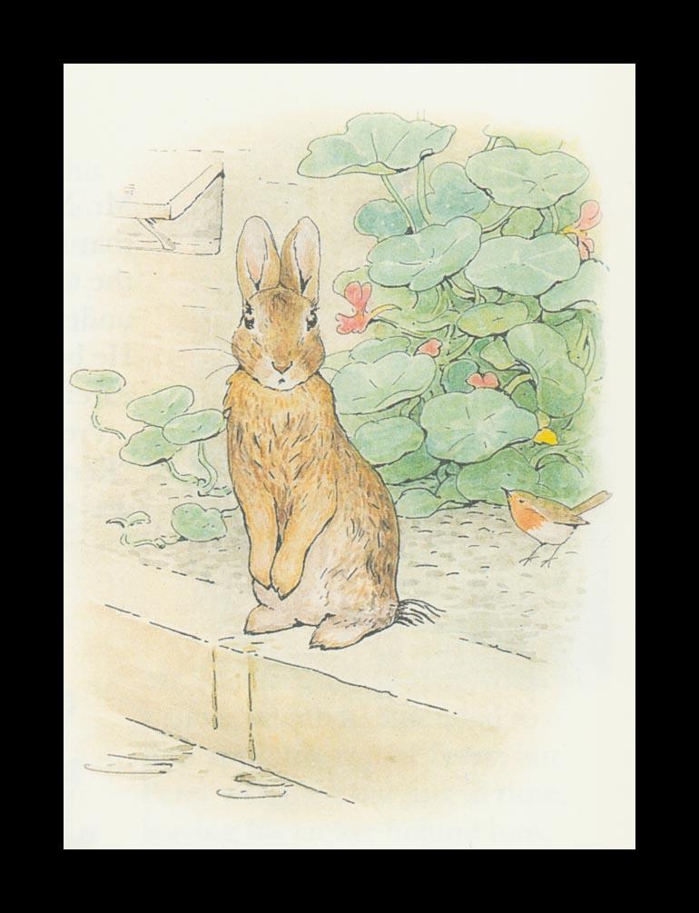 Бенджамин и Кролик Питер Банни. Сказка о кролике Питере 42