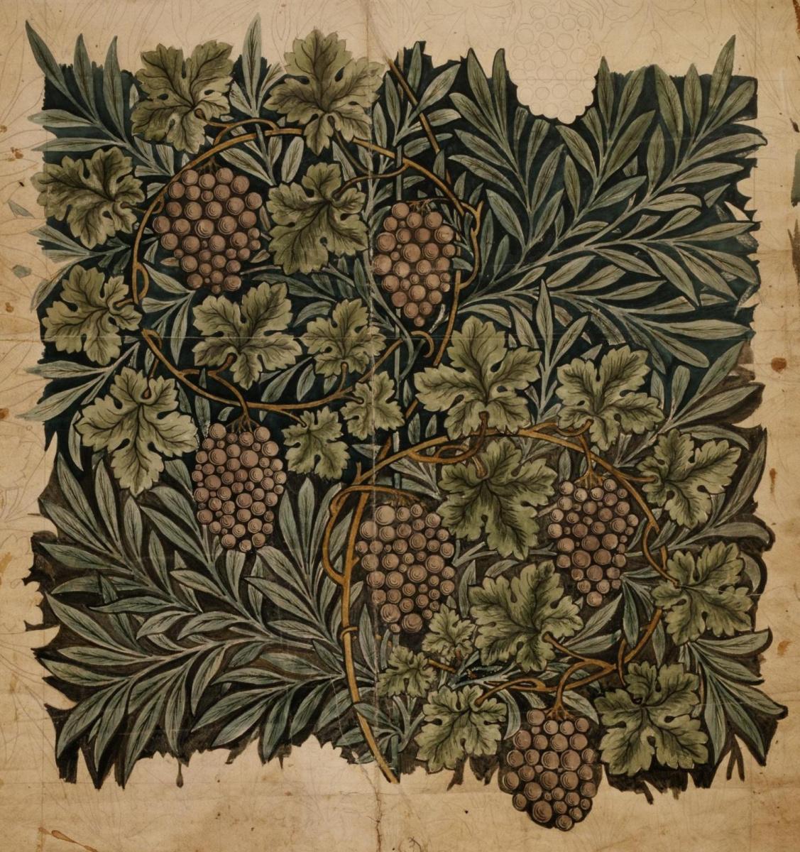William Morris. Grapes