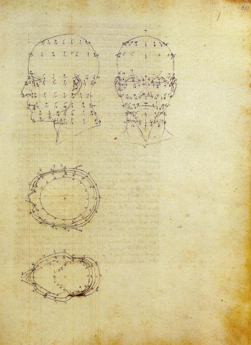 Пьеро делла Франческа. Изучение пропорций лица