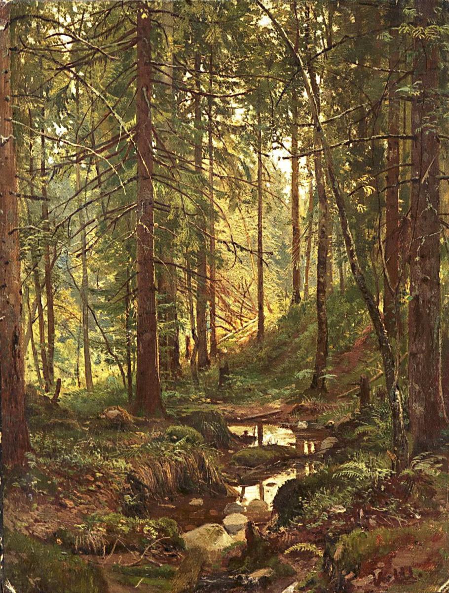 Иван Иванович Шишкин. Ручей в лесу. Сиверская