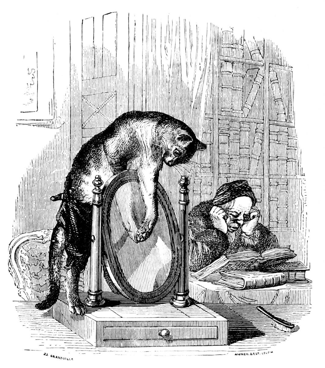 Жан Иньяс Изидор (Жерар) Гранвиль. Любознательный Кот. Иллюстрации к басням Флориана