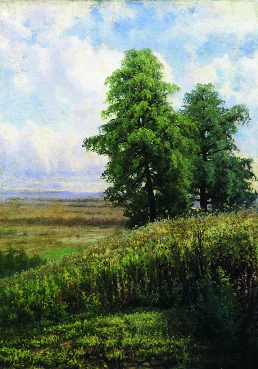 Иван Иванович Шишкин. Косогор